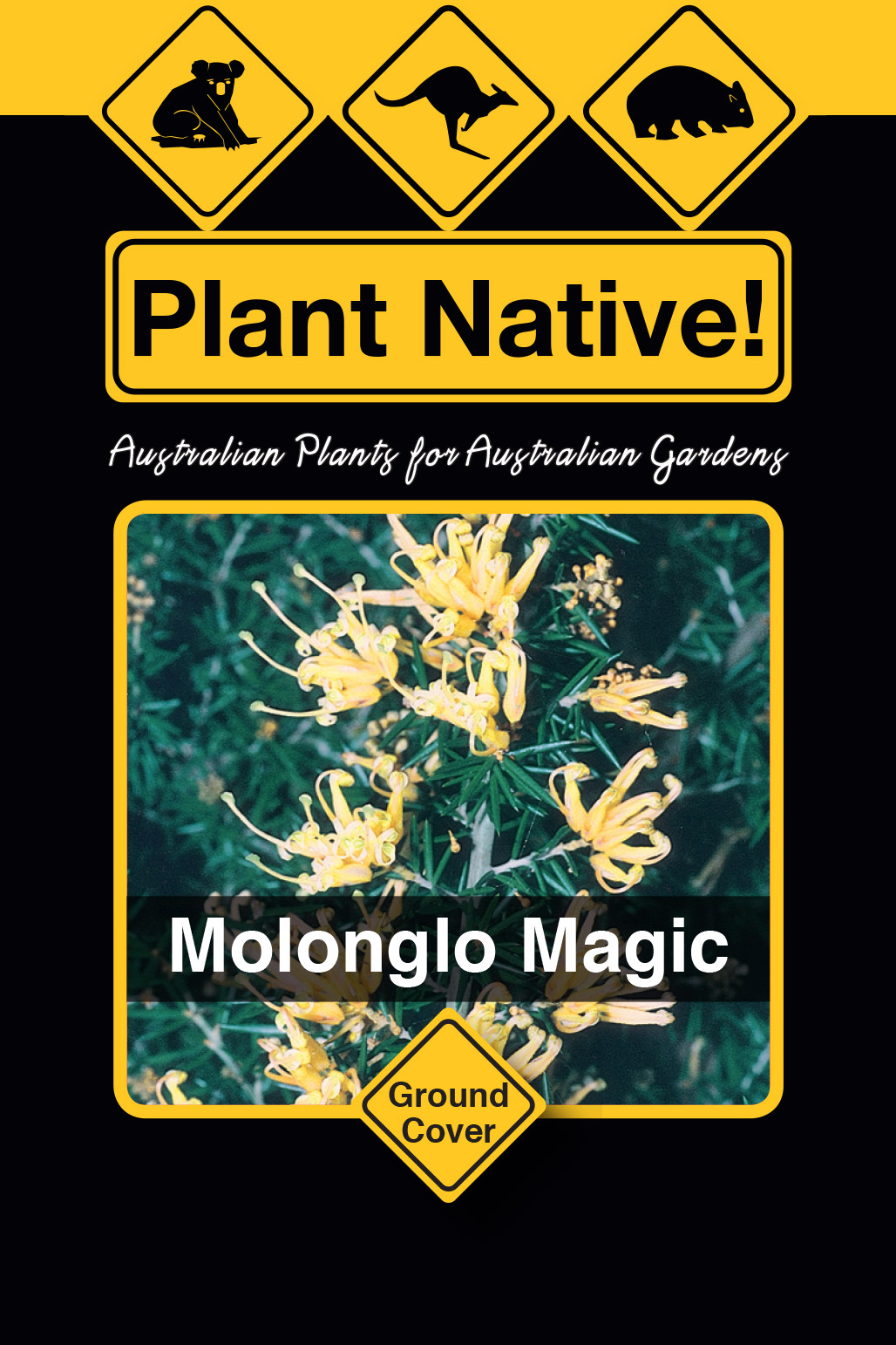 Molonglo Magic - Plant Native!