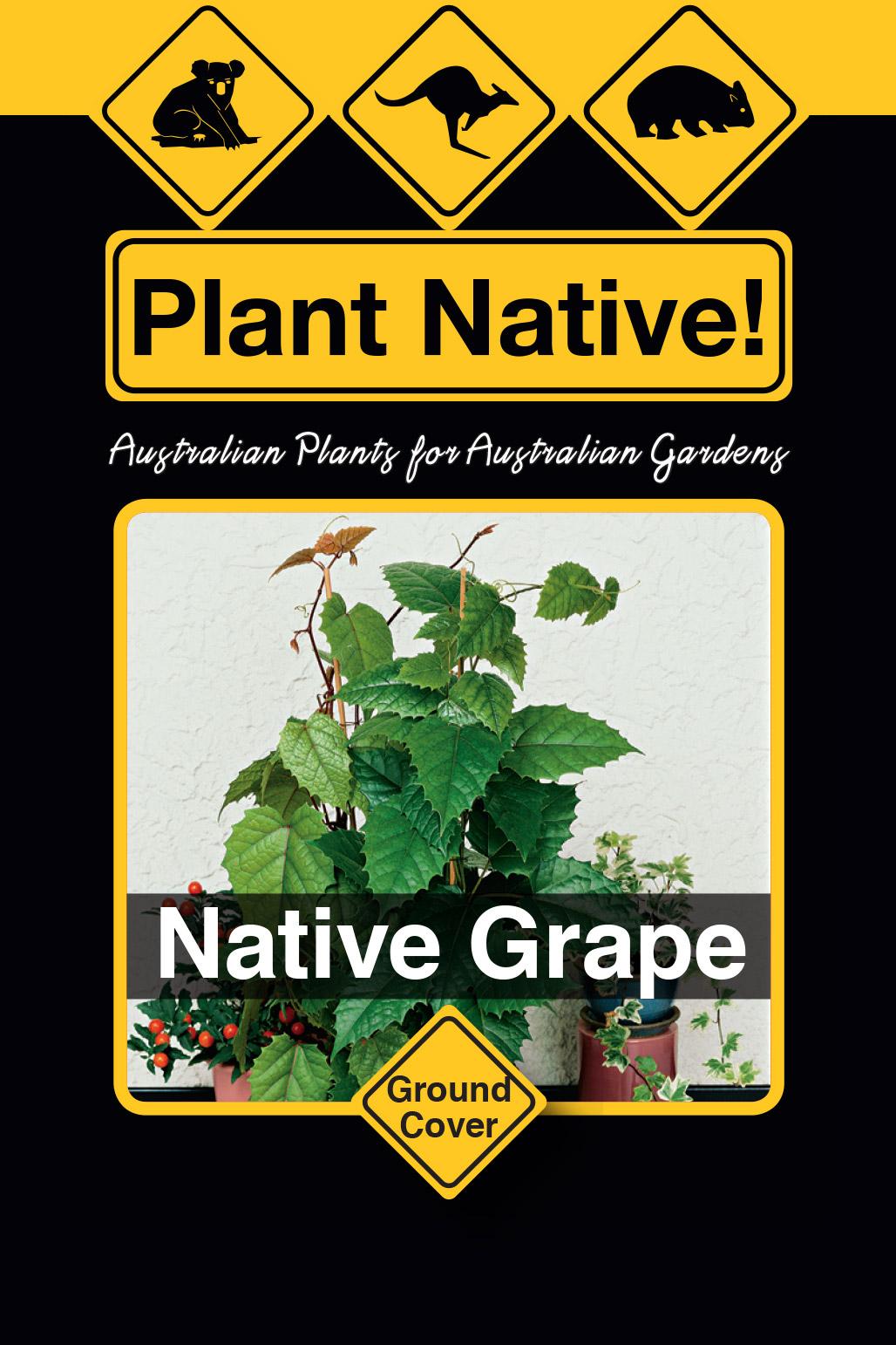 Native Grape - Plant Native!