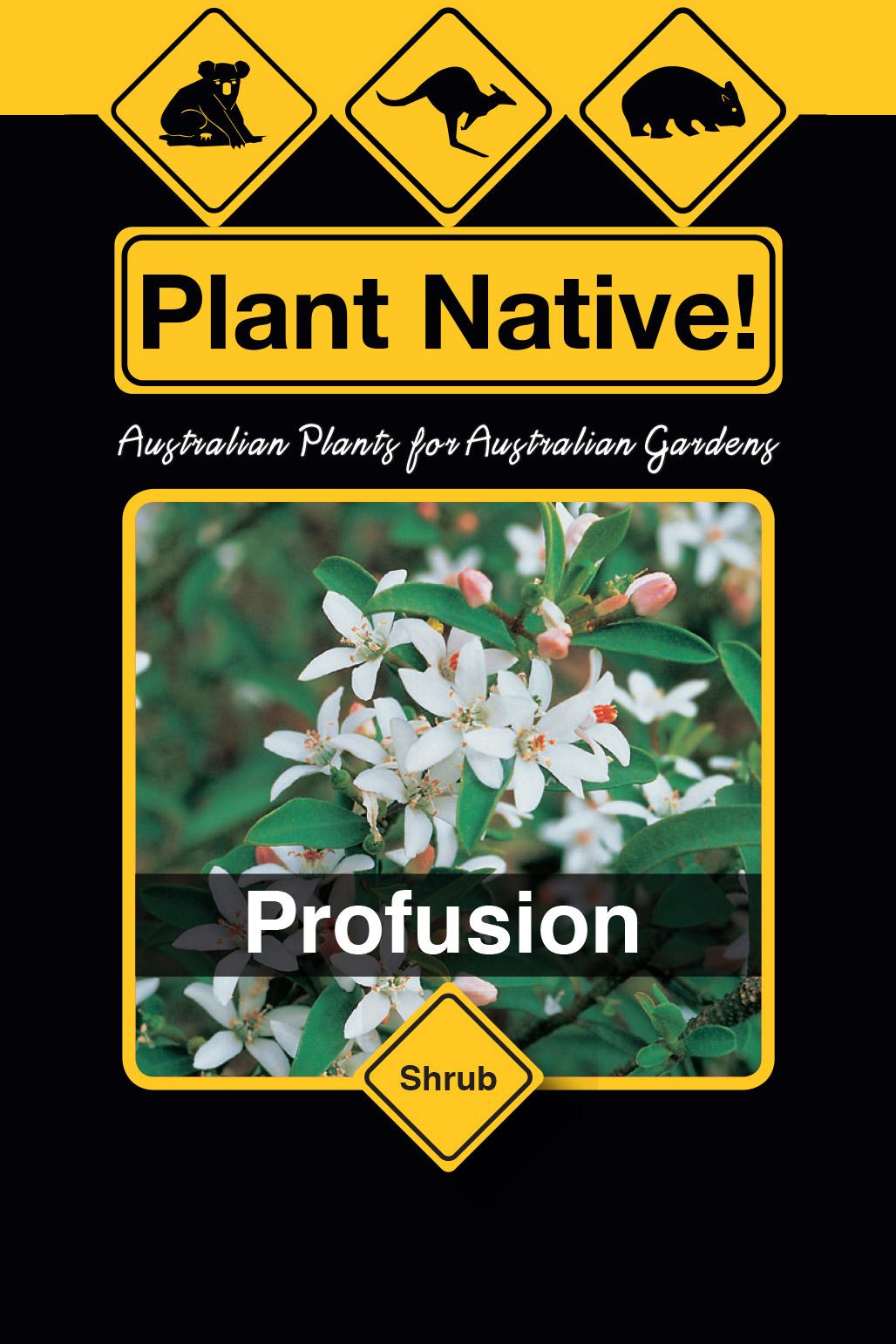 Profusion - Plant Native!
