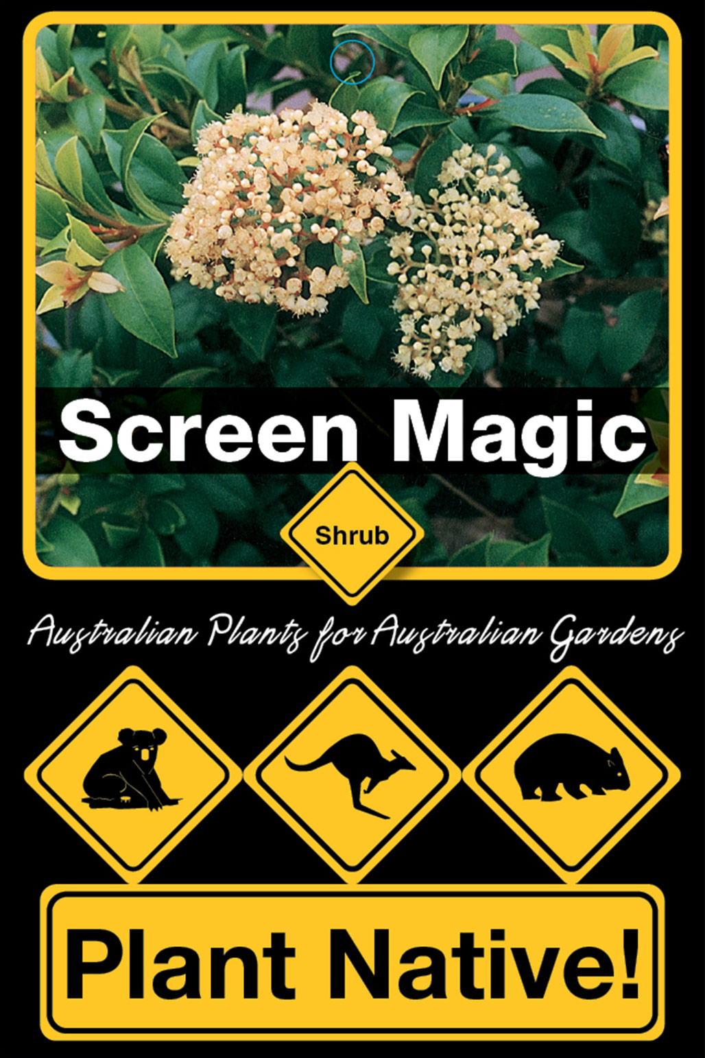 Screen Magic - Plant Native!