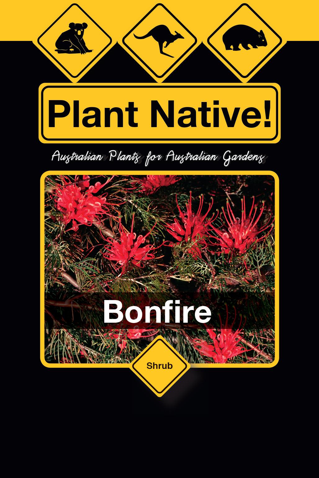 Bonfire - Plant Native!
