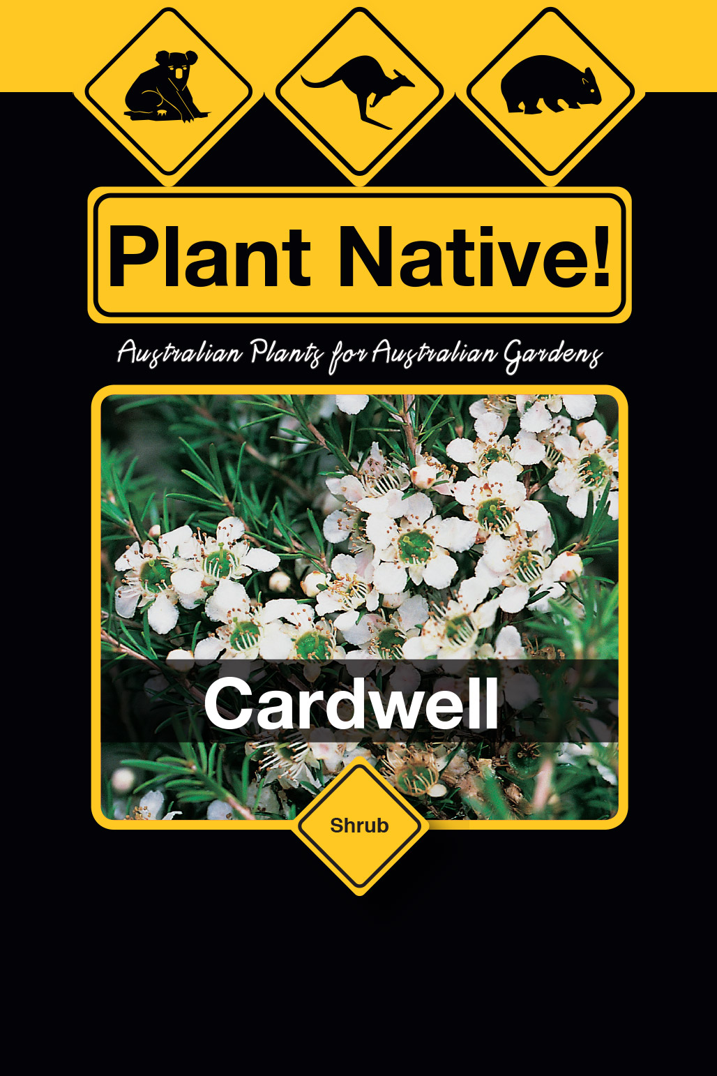 Cardwell - Plant Native!