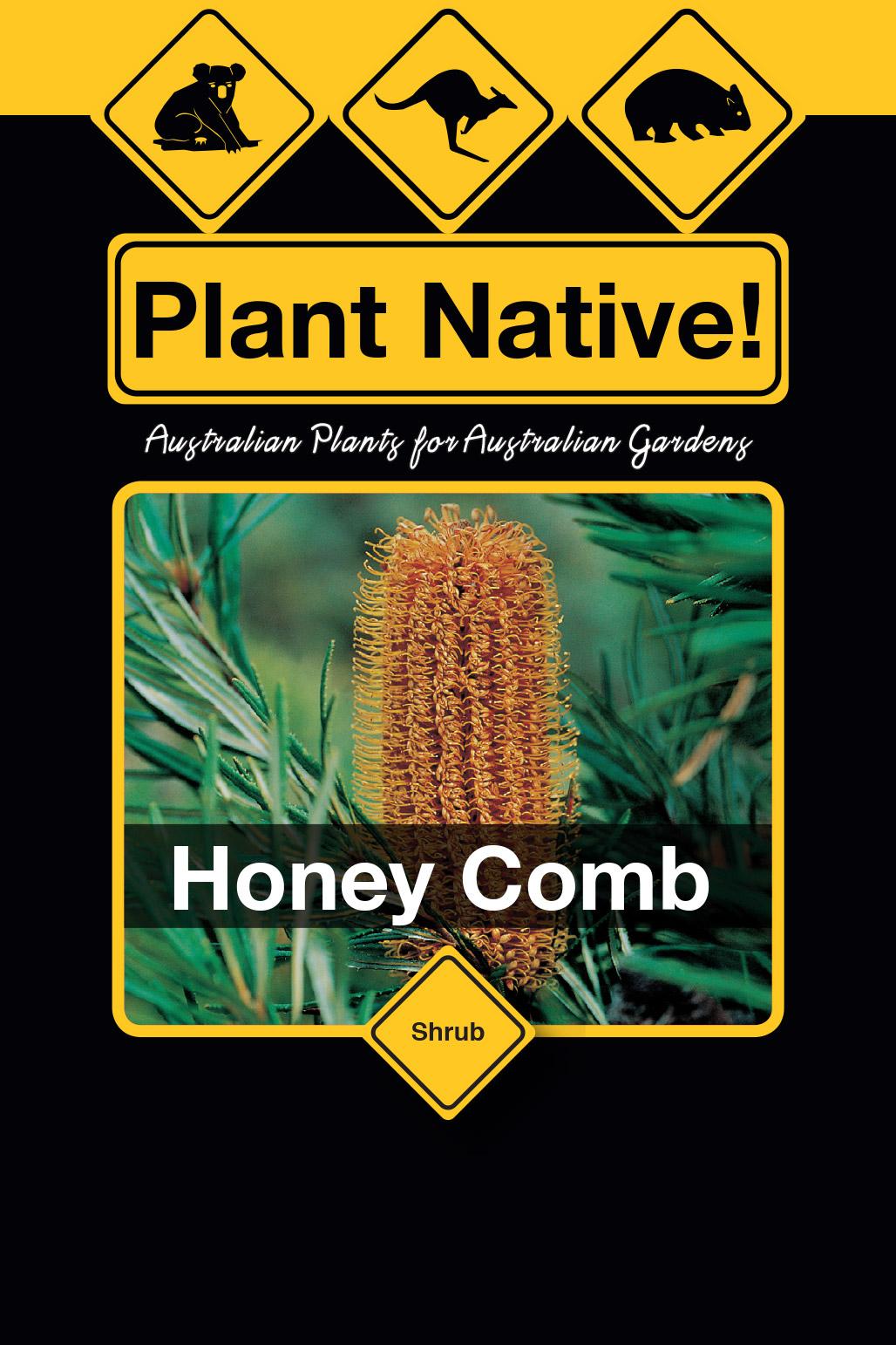 Honey Comb - Plant Native!