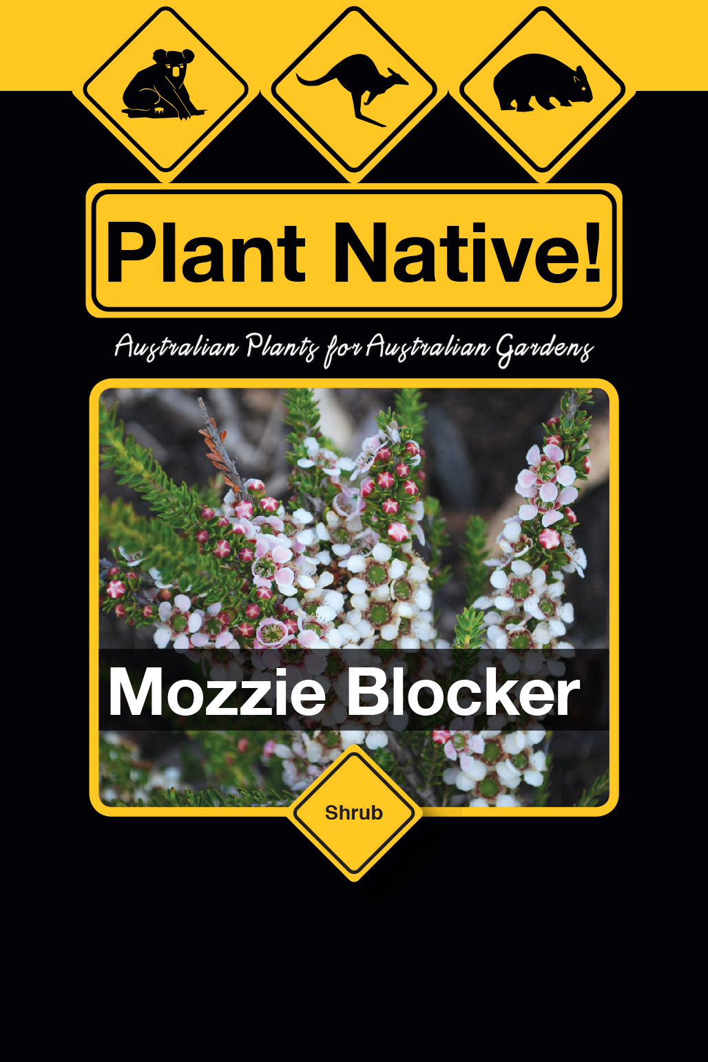 Mozzie Blocker - Plant Native!