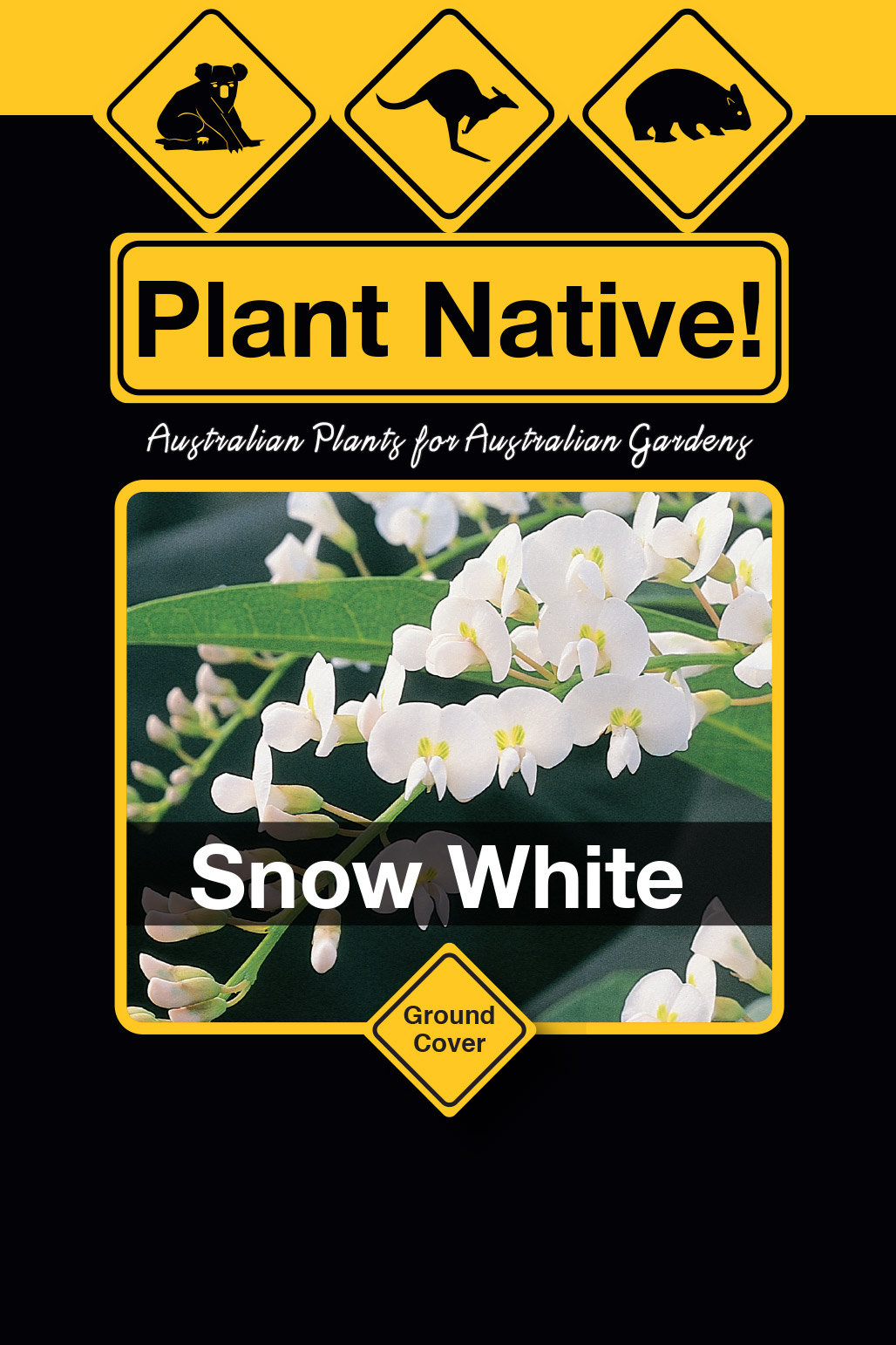 Snow White - Plant Native!