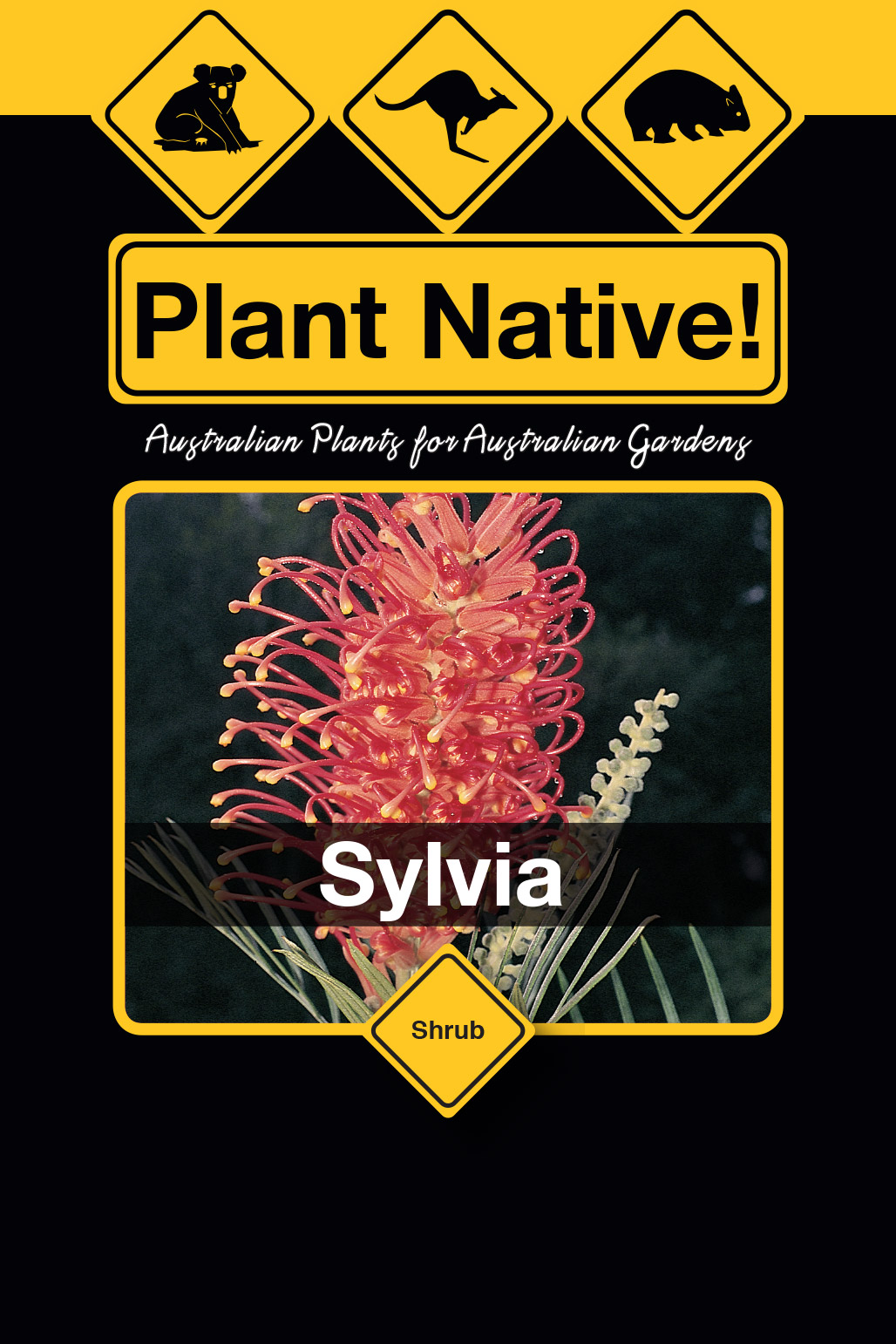Sylvia - Plant Native!
